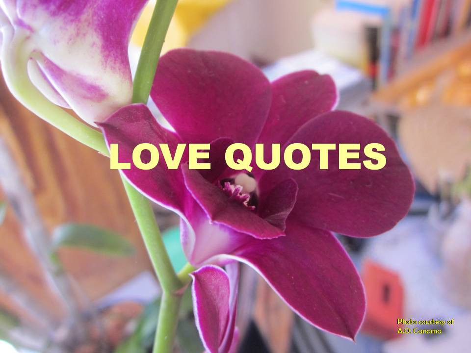 "Alt= "" Love quotes for everyone."""