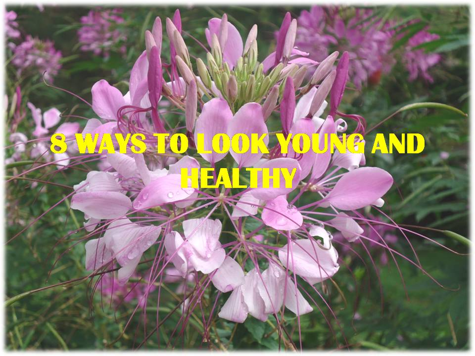 Like these wonderful and well-nourished flowers, humans should look young and healthy with these 8 ways or tips.""